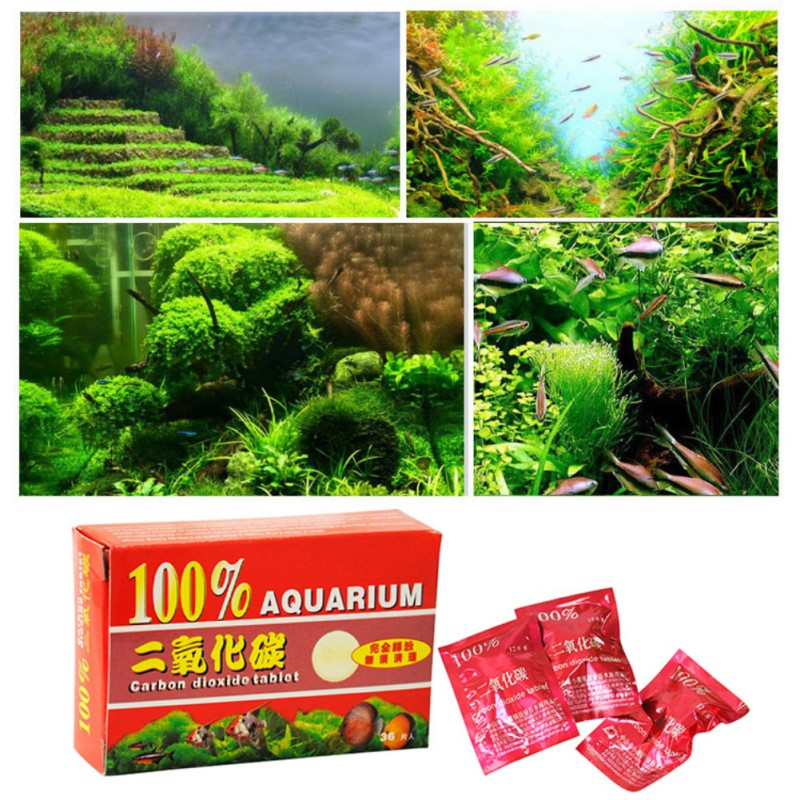 Aquarium co2 carbon dioxide tablets for plants aquarium for Co2 fish tank