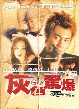 《灰色惊爆》2003年台湾电影在线观看