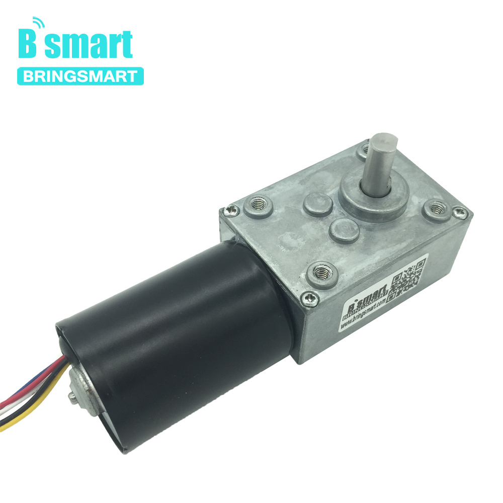 Bringsmart 5840-3650 Brushless DC Motor 12V Worm Gear Motor 24V Reversible Self-lock Gearbox Brake Micro Turbine Worm Reducer