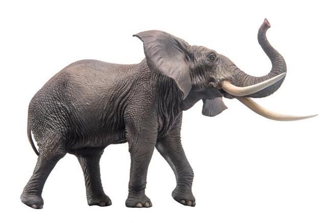 African Elephant Toys For Boys : Schleich elefante africano hembra figura elefanti