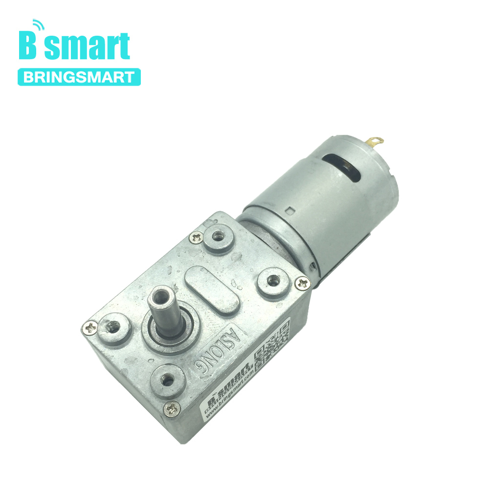 Bringsmart JGY-385 Worm Gear Motor DC 12V with Self-lock Gearbox Mini DC Electric Motor Reductor 24v Carbon Brush for DIY Part