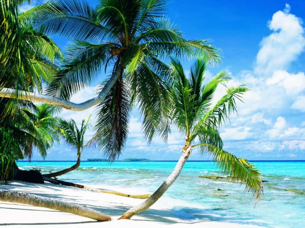 Free Shipping Classical Beach Scenery Wall Hanging
