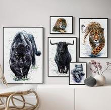 Black White Black Panther Lion Tiger Bison 5D animal Diamond Embroidery full square/round drill diy diamond painting home decor black diamond gizmo ultra white 1sz