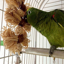 Parrot Chewing Toy