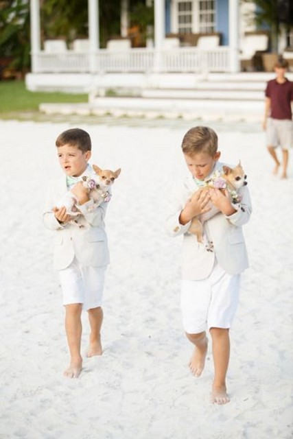 New 2016 Summer Beach Boys Wedding With Clothes Coat White Shirt Short Pants Nicely Kids