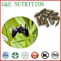 500 мг х 500 шт. Натуральный Черный муравей/Tttyruei Капсулы с бесплатной доставкой