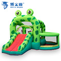 Doctor Dolphin Frog Inflatable Bouncer with Slide outdoor