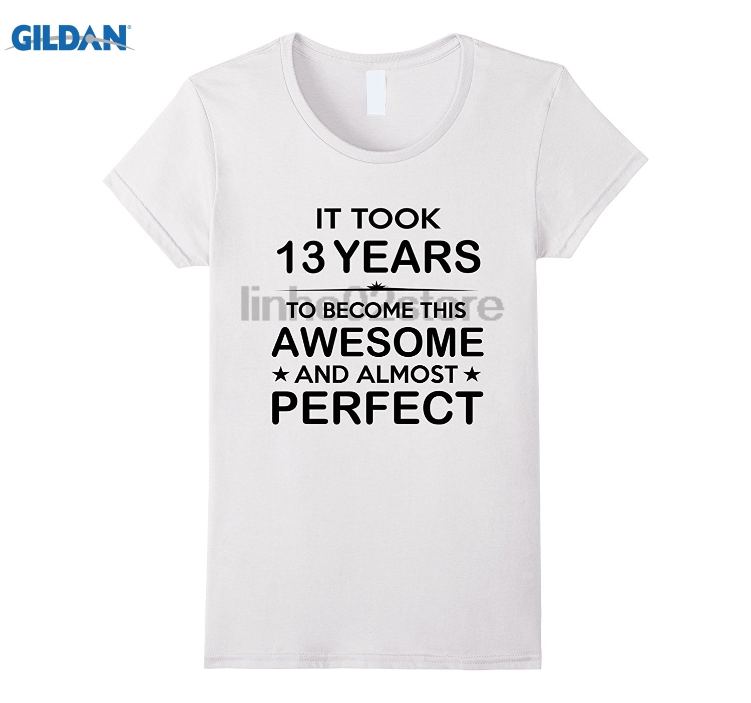 GILDAN Thirteen 13 Year Old 13th Birthday Gift Ideas For Boy Mens T Shirt