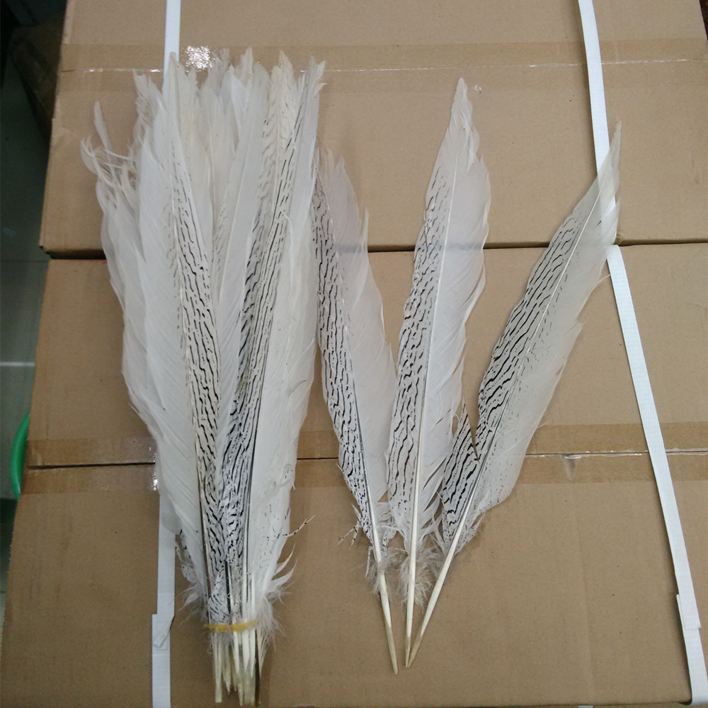 White craft feathers bulk - 40 45cm Long Silver Pheasant Tail Feathers Natural White Fly Fishing Craft 10pcs