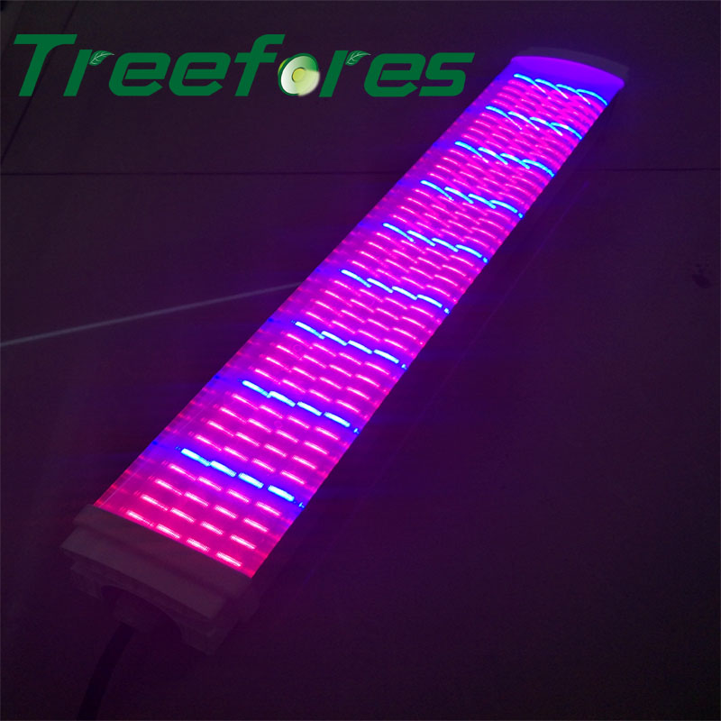 Farm Flower Agriculture Light IP65 T8 LED Tube Batten 90Ra Grow Lamp 20W 30W 40W 50W 60W 80W 100W Green House Garden Lighting