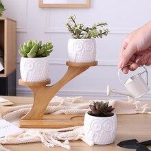 купить 1 Set Ceramic Owl Garden Pots Modern Decorative Nursery Succulent Plant Pot 3 Bonsai Planters with 3-Tier Bamboo Shelf Hot Sale дешево
