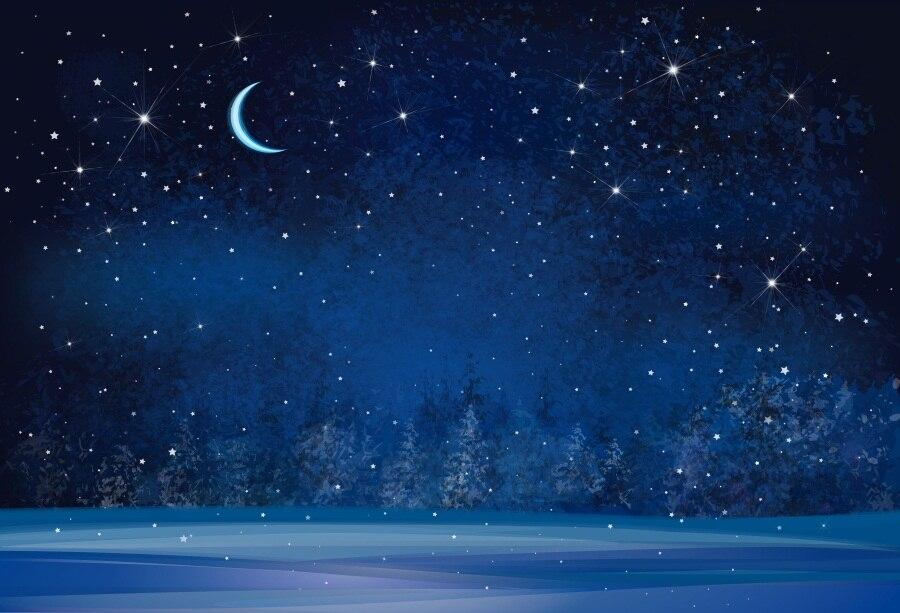 Dark Blue Sky Background: Laeacco Moon Dark Blue Sky Glitter Star Tree Forest Snow