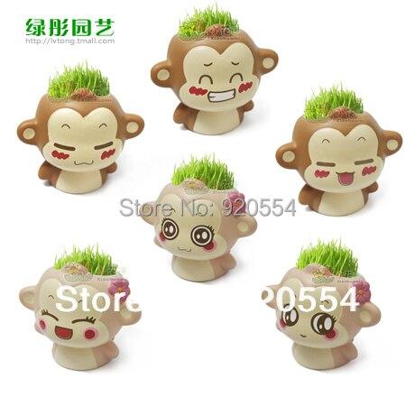 you laugh monkey creative gift plant bonsai grass doll office mini plant fantastic home decor pot beautifying office bonsai grass pots planters mini