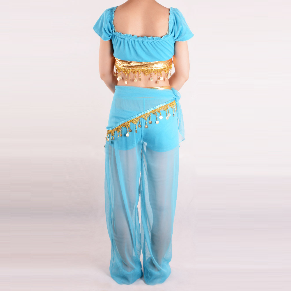 Princess Jasmine Costume Adult Deluxe Belly Dance Aladdin Jasmine ...