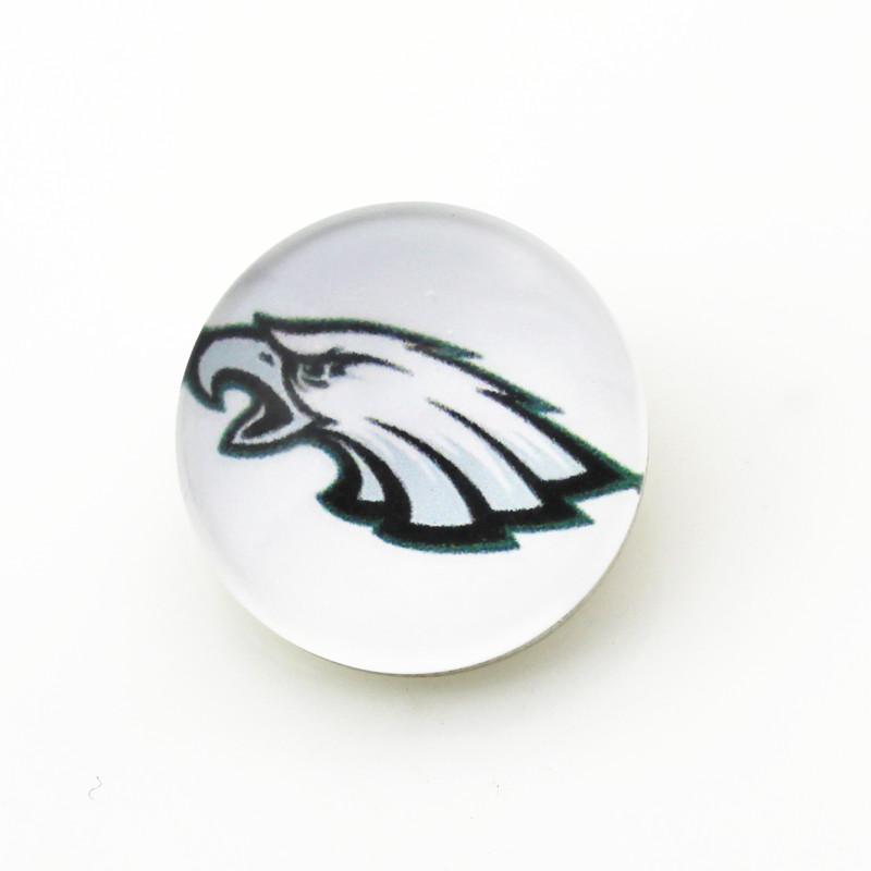 Philadelphia Eagles NFL Team