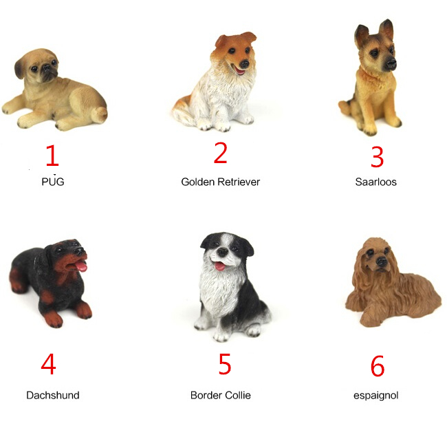 Small Cute Dog Breeds List