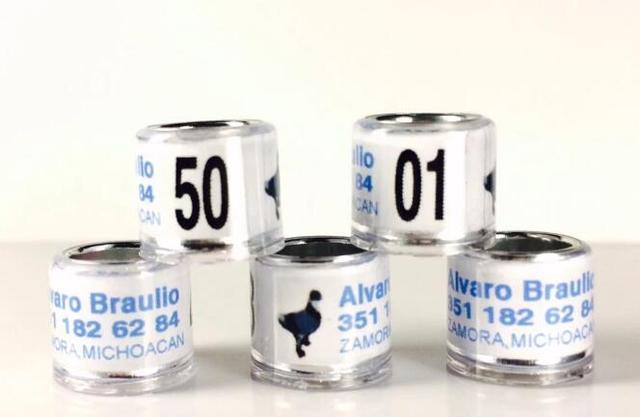 aluminium bird band