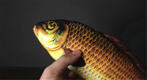 Image 4 - Appearing Fish (28cm) Magic Tricks Fish Appearing From Card Case Magia Magician Stage Illusions Gimmick Prop Mentalism 2018 FISM