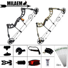 1Set 30-70lbs Compound Bow Carbon Arrow Spine 500 Bow Sight Stabilizer Bow Release Stand IBO 320FPS Outdoor Shooting Accessories topoint archery compound bow package t1 cnc milling bow riser 19 30in draw length 19 70lbs draw weight 320fps ibo