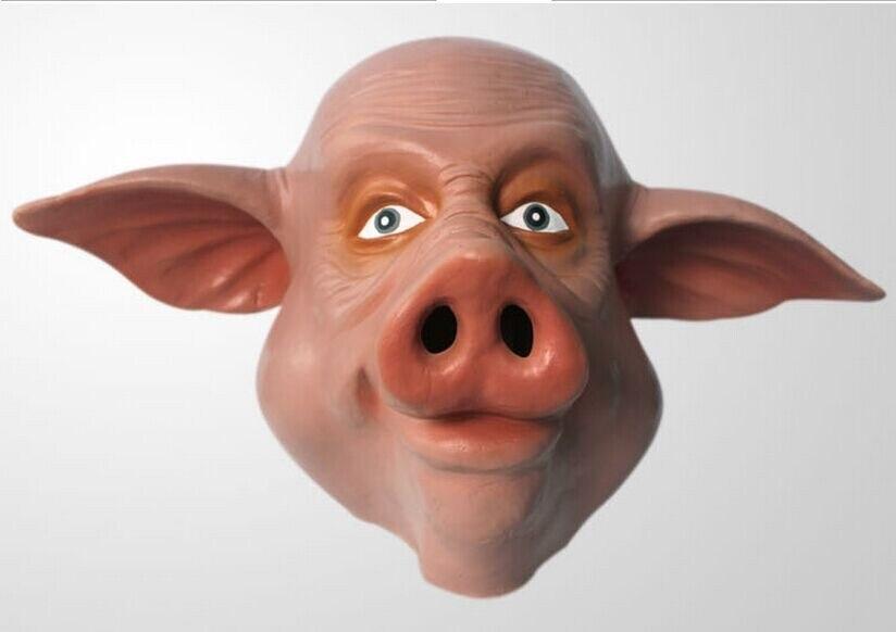 Картинки по запросу злая свинья картинка