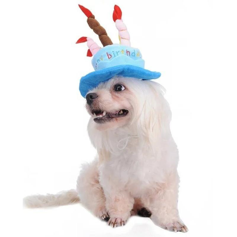 Cute Adorable Cat Dog Pet Happy Birthday Party Hat With Cake And 5