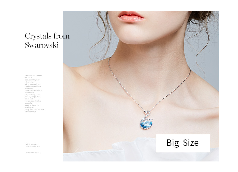 Swarovski Swan Necklace Earrings Set (8)