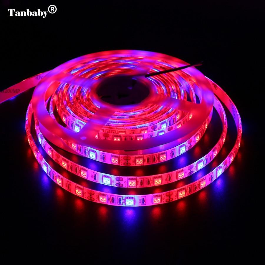 5M LED augu audzēšanas joslu gaisma DC12V pilna spektra SMD 5050 sarkani zils 3: 1 4: 1 5: 1 Elastīga virve akvārija siltumnīcai