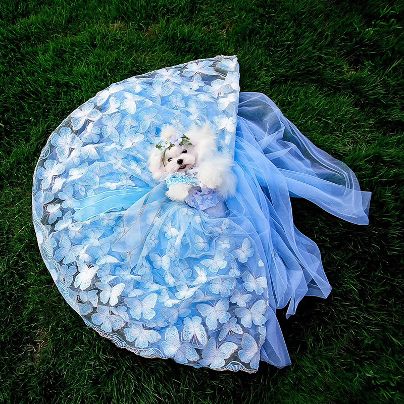 OnnPnnQ Pet Dog Dress Long Tail Wedding Dog Clothes Princess Tutu Dress For Small Medium Dogs