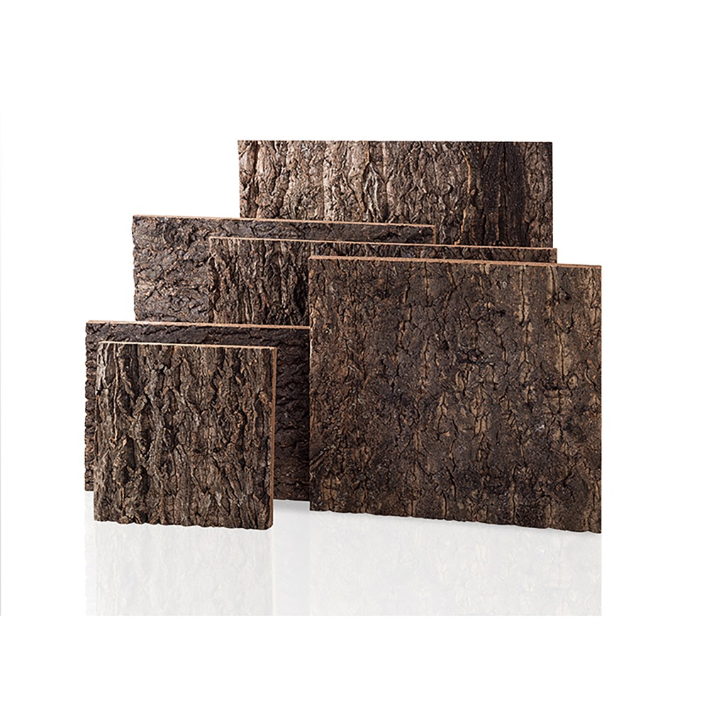 Natural Tree Bark Background For Gecko Lizard Snake Tortoise Reptiles Tarantula Frog Vivarium Terrarium Decoration Landscaping