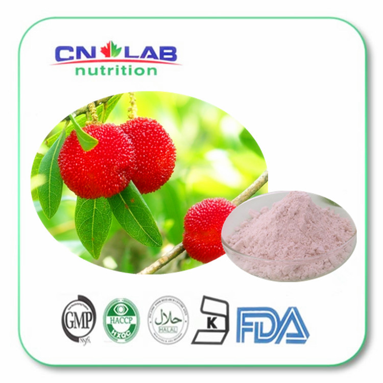 цены 2017 Bayberry Fruit Extract Alibaba China/China Hot Sale Bayberry Fruit Powder/Bayberry Bark p.e. Made in China