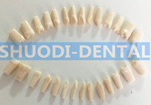 100% High Quality Model Dental Universal Plate Type Removable Teeth dental children removable deciduous teeth model permanent tooth alternative display studying teaching tool