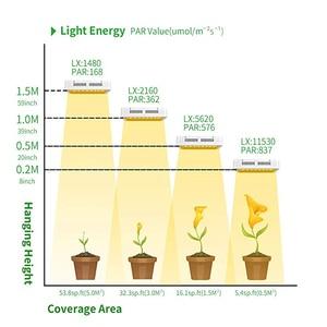 Image 3 - Yeni tasarım LED bitki büyümek işık lambası 1000W güneş ışığı tam spektrum kapalı tohumlama için çiçek sebze çadır phyto lamba fitolamp