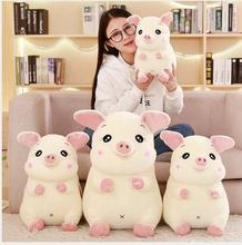 WYZHY down cotton cute pig pillow plush toy sofa decoration to send friends and children gifts 30CM