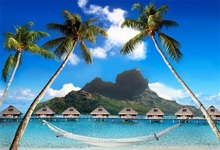 Laeacco Tropical Seaside Palm Tree Hammock Scenic Photography Backgrounds Customized Photographic Backdrops For Photo Studio