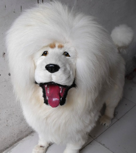 simulation cute white tibetan mastiff 90x88x32cm model polyethylene&furs dog model home decoration props ,model gift d883 simulation cute sleeping cat 25x21cm model polyethylene