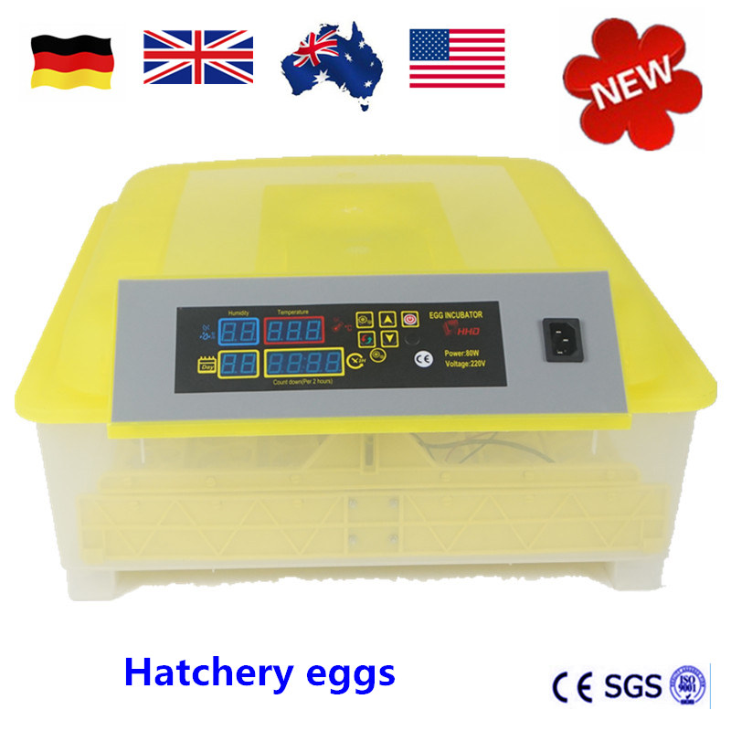 Hatchery eggs 48 automatic China cheap machine hatching eggs CE approved Mini egg incubator Brooder china cheap hathery 12 egg incubator automatic brooder machines for hatching eggs