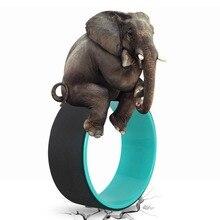 Йога круги TPE Professional талии форма Бодибилдинг ABS тренажерный зал тренировки колесо для йоги назад обучение инструмент