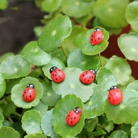 Wholesale 100Pcs/Lot Model Kawaii Cabochon Mini Ladybug Beatles Garden Ornaments Scenery Craft For Plant Pot Decor Al3314