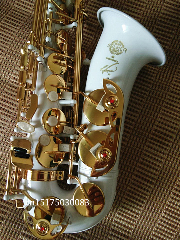 Selmer Top music France E-flat R54 Alto Saxophone Professional Eb white gold key Sax Mouthpiece With Case and Accessories бухта рама 30 метров облака экстра 30 кг 30 м 4 5 мм фиолетовый 60см