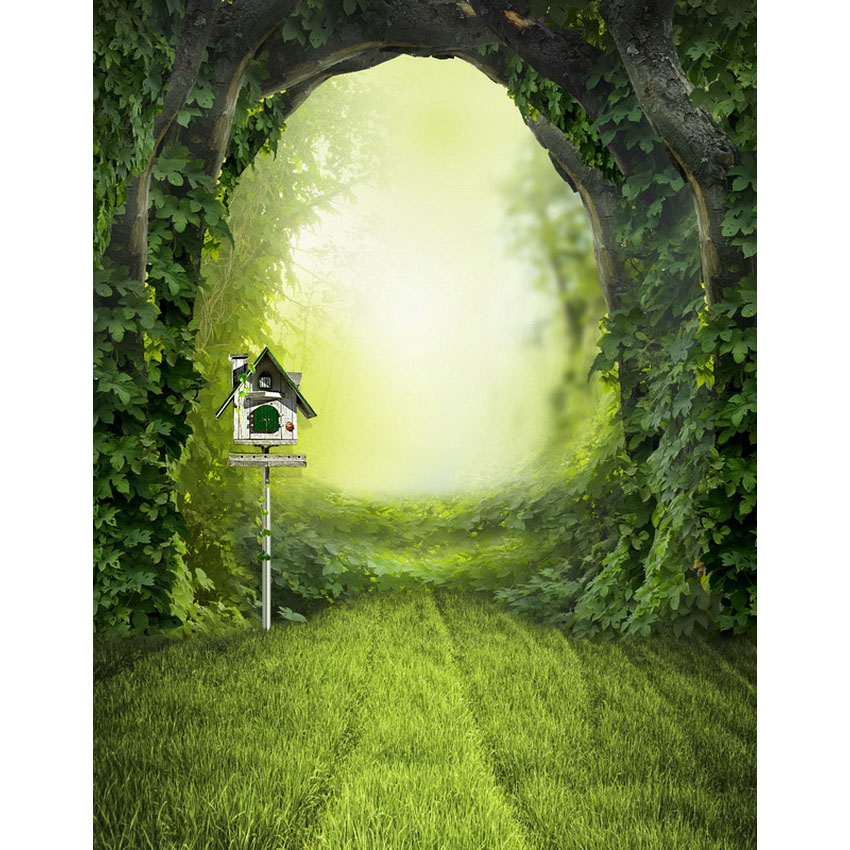 Custom fairyland gate photogaphy studio backgrounds for children drama play backdrops made of vinyl cloth S-2336