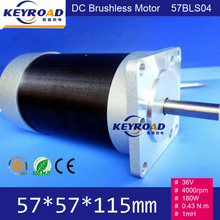 Square Head and Circle Fuselage 36V 180W 0.43 N.m 4000rpm 57mm 3 phase DC Brushless Motor 57BLS04