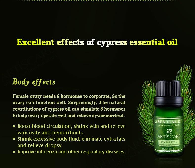 cypress_05