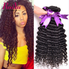 3 Bundles Brazilian Virgin Hair Deep Wave Brazilian Deep Curly Virgin Hair Brazilian Curly Virgin Hair Deep Wave Human Hair