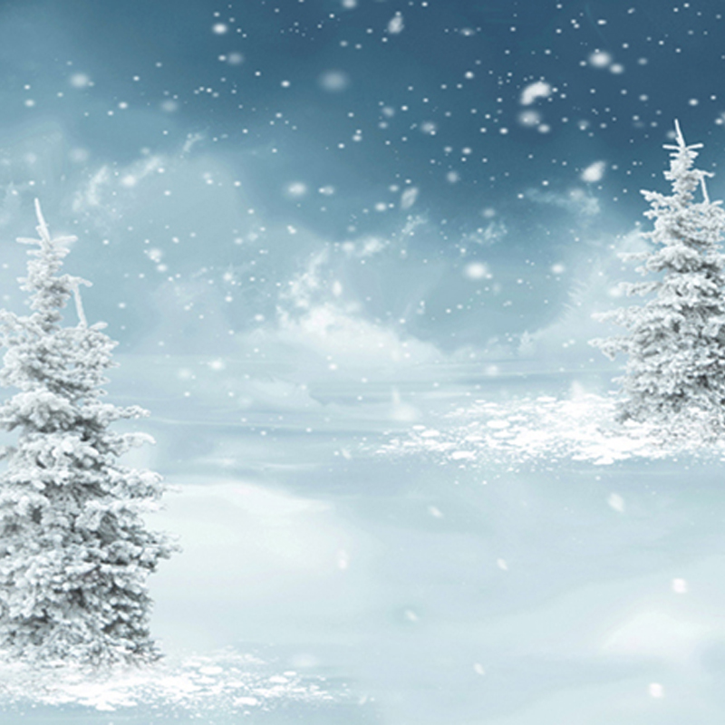 Gray Snow Winter Backdrops for Photo Studio fond de studio de photographie Holiday Photography Backgrounds 150cm*200cm