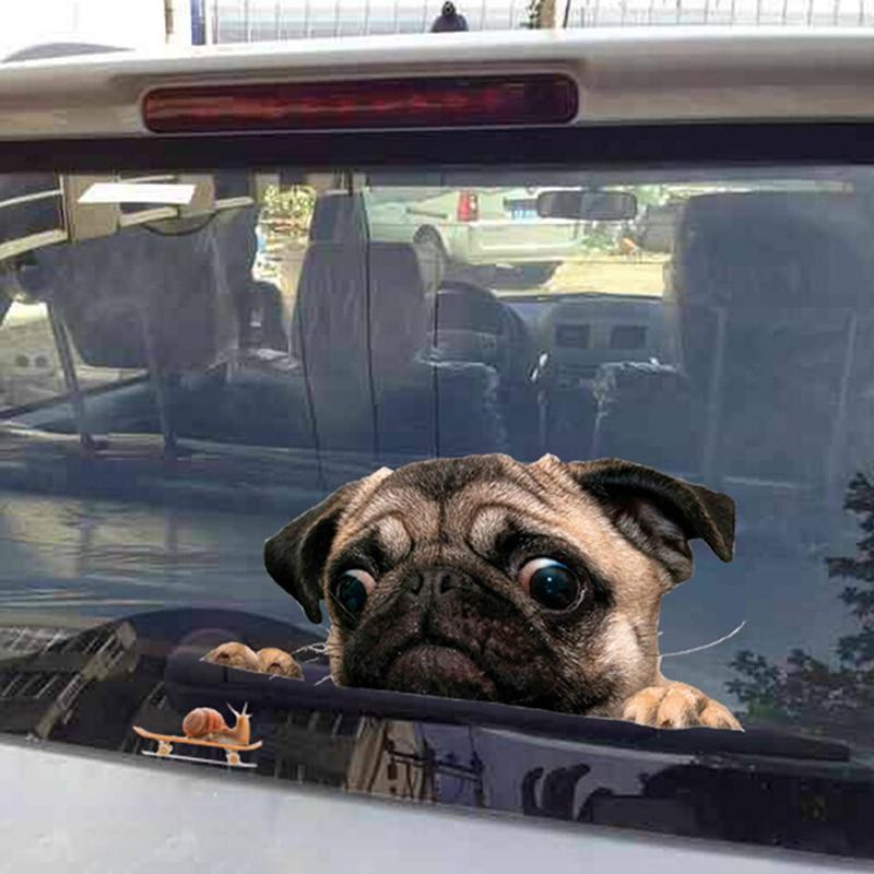 Cat Breed PERSIAN Danger Sticker Pet for Bumper Locker Car Door