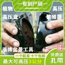 10pcs/lot Plant  Root High-pressure  Breeder  Pot Box Cutting GraftingGallonPropagator Bonsai Tool Root Controller Garden Tools стоимость
