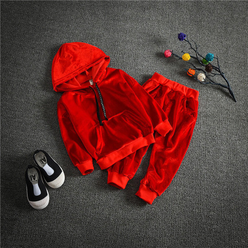 0-5 years baby clothing set cotton autumn winter hoodies + pants 2pieces children outerwear kids clothes suit newborn outfits