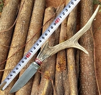 Damascus Small Straight Knife Special Retro Style Ram S Horn Handle Knife Collection Gift