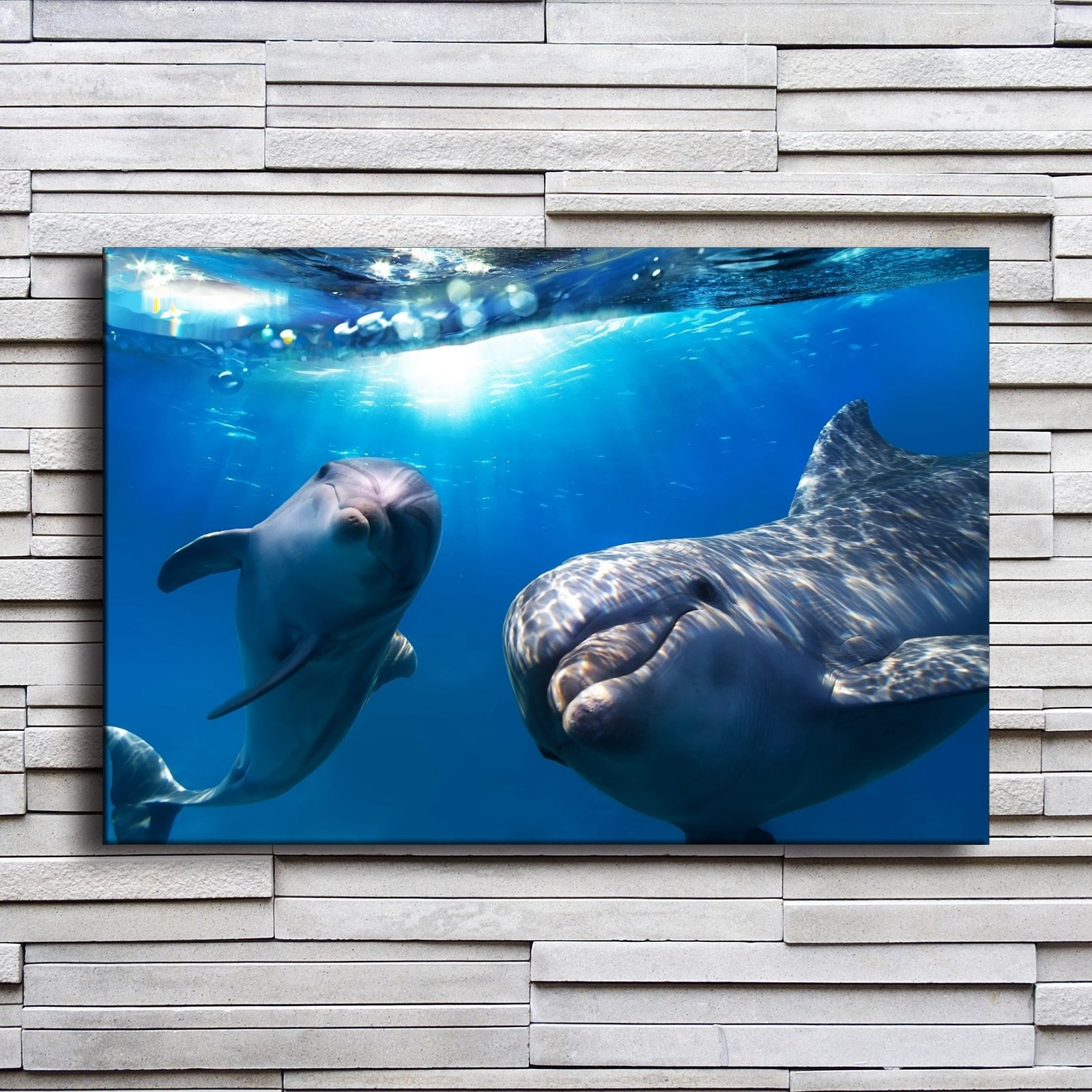 Dolphin Underwater Animal Poster