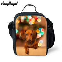 Kids Portable Cooler Bags Lunch Food Bag Dachshund Print Women Man Costom Box Container Insulated Travel Picnic Storage Girl Boy